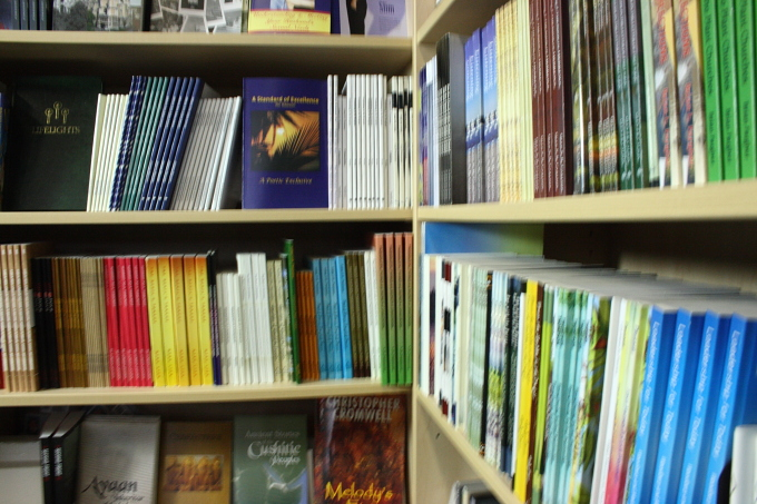pagemaster-bookshelf